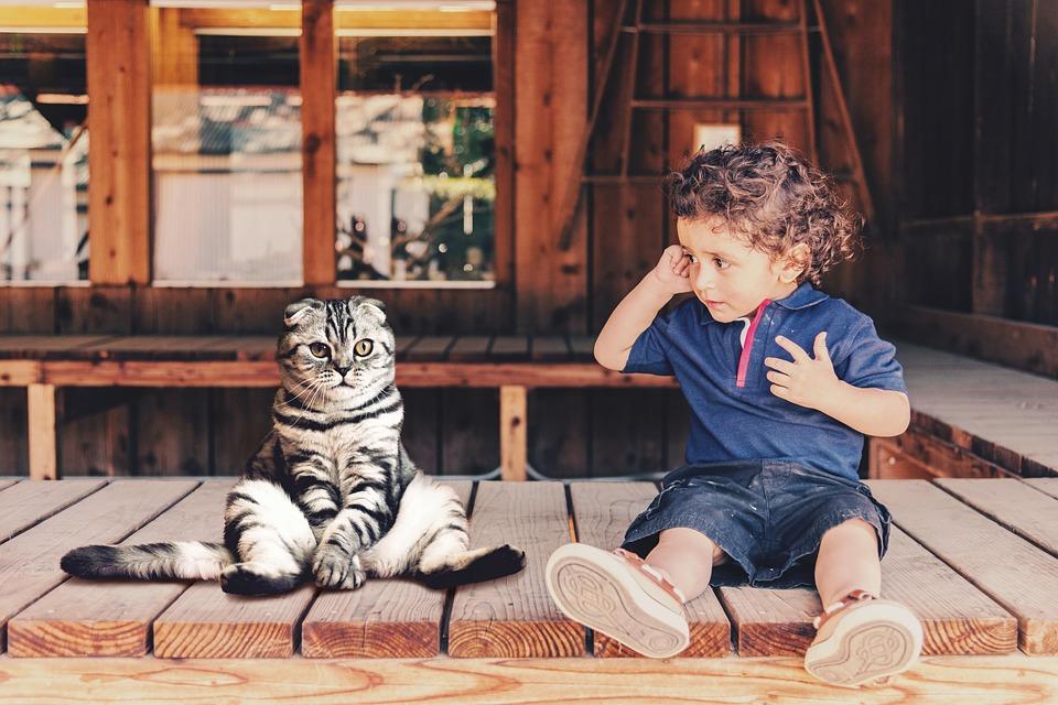 Domácí mazlíček – jakého dětem pořídit? 2
