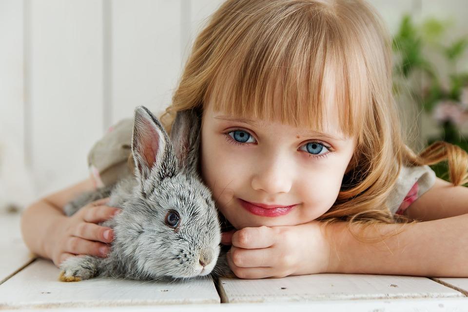 Domácí mazlíček – jakého dětem pořídit? 3