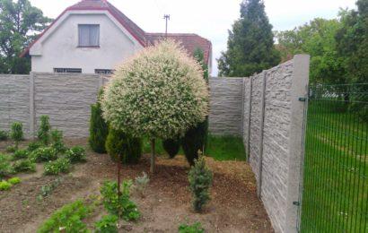 Tápete nad výběrem plotu k ohraničení svého pozemku?