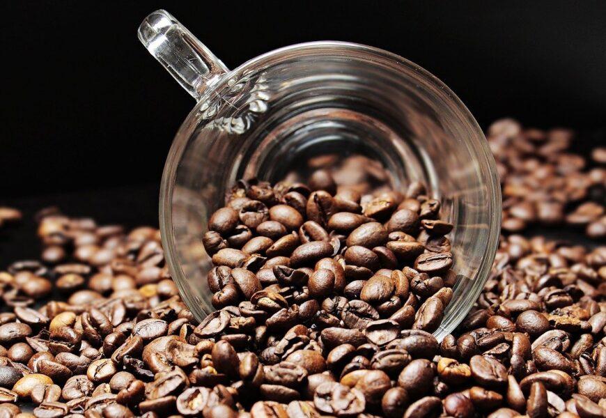 Věděli jste, že káva je po ropě druhou neobchodovanější komoditou na světě?